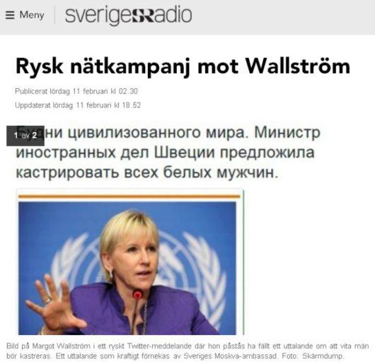 Российская интернет-кампания против Вальстрём