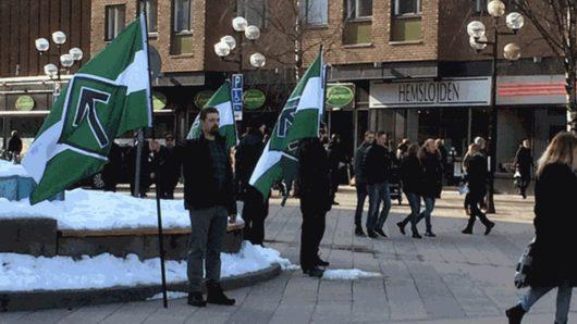 Митинг нацистской организации «Северное движение сопротивления»/Nordiska motståndsrörelsen (NMR) в Умео