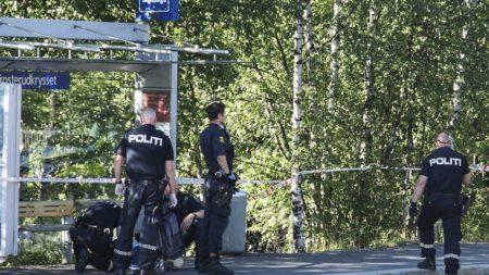 В Норвегии убили гражданку России