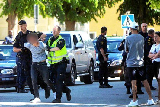Шведы протестуют против социальных служб, изымающих детей из семей