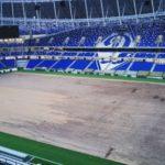 Поле на стадионе «Динамо» в апреле 2019 г.