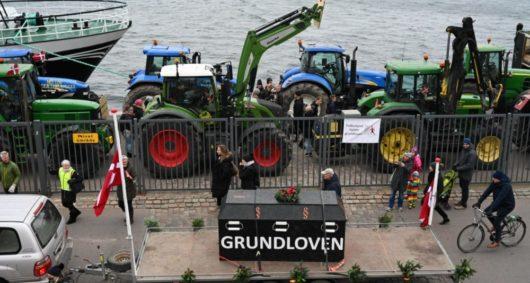 В Дании прошли демонстрации против массового убийства норок